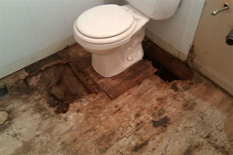 Diy Wood Subfloor Water Damage Spongyabob