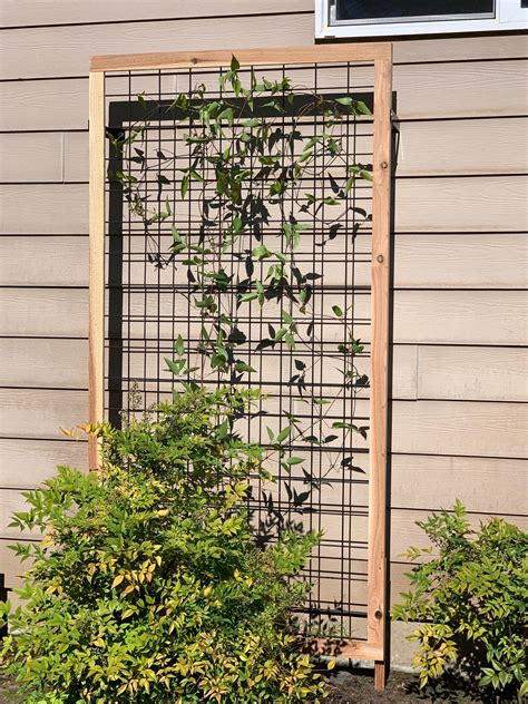 Diy Wood Trellis For Vines