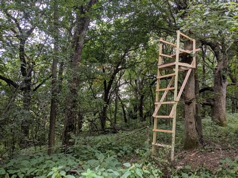 Diy Wooden Ladder Deer Stand