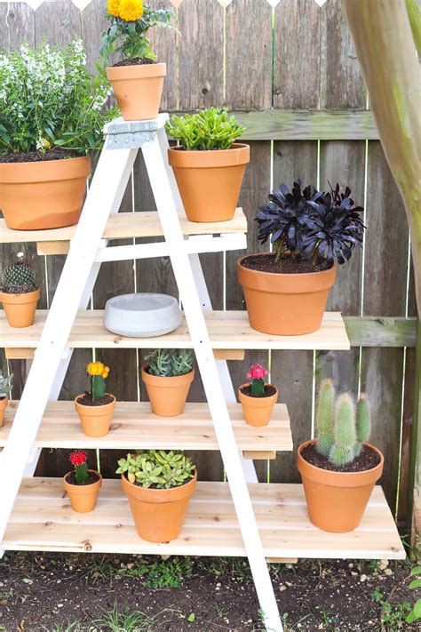 Diy Wooden Ladder Plant Stand