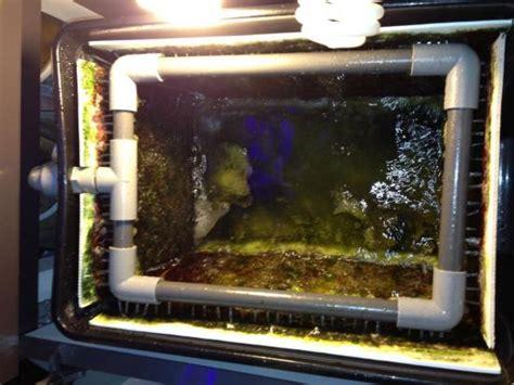 Diy-Algae-Scrubber-Box