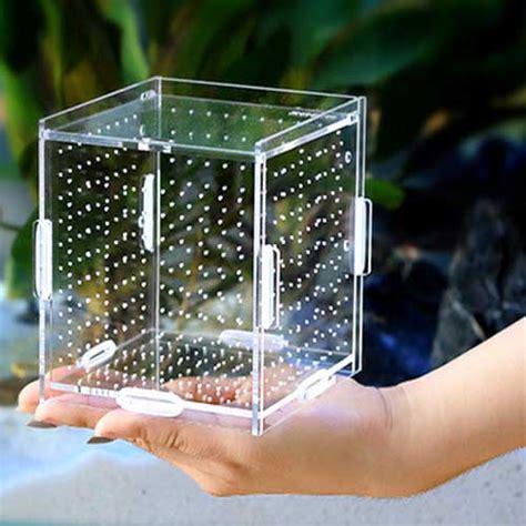 Diy-Aquarium-Breeding-Box