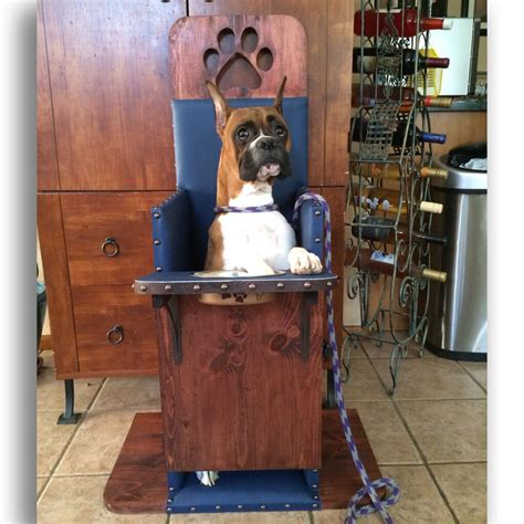Diy-Bailey-Chair-For-Dogs