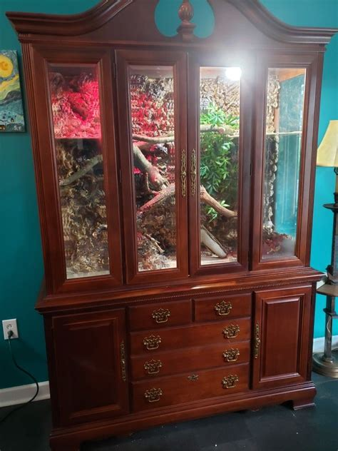 Diy-Bearded-Dragon-Cabinet