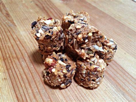 Diy-Bird-Food-Recipes