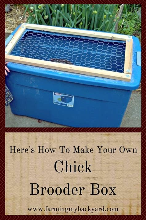 Diy-Build-Your-Own-Brood-Box