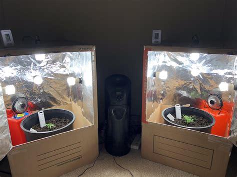 Diy-Cardboard-Grow-Box