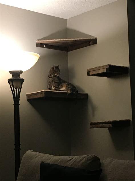 Diy-Carpeted-Cat-Shelves