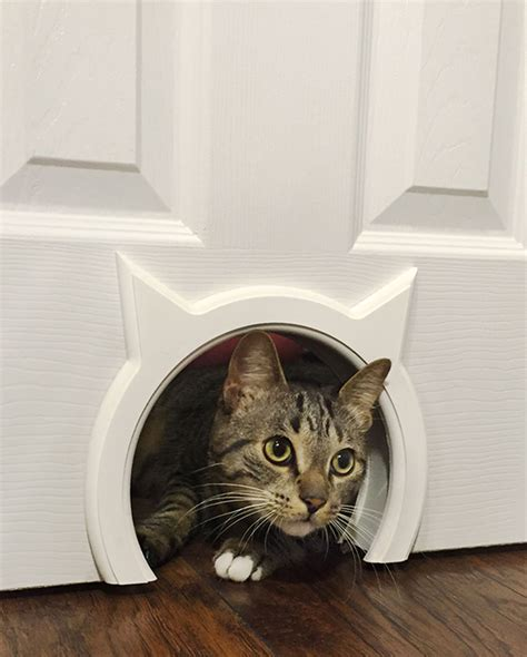Diy-Cat-Door-Interior