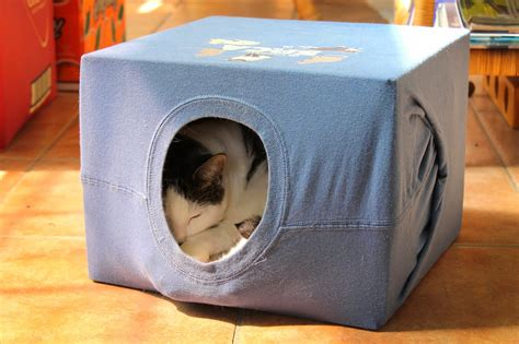 Diy-Cat-House-T-Shirt-Box