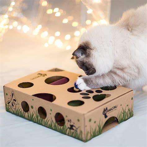 Diy-Cat-Puzzle-Feeder-Shoe-Box