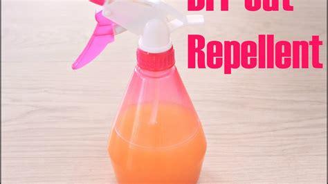 Diy-Cat-Repellent-Spray-For-Furniture