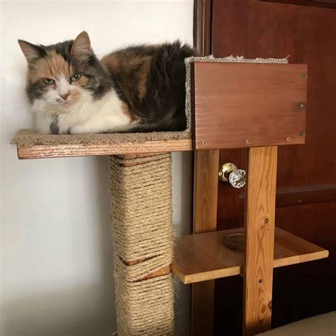 Diy-Cat-Tree-Ideas