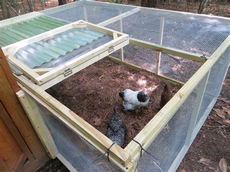 Diy-Cheap-Chicken-Run