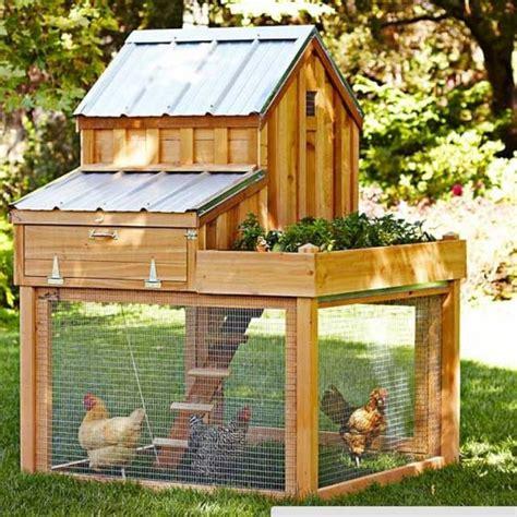 Diy-Chicken-Coop-Budget