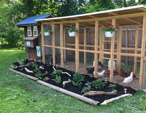 Diy-Chicken-House-And-Run