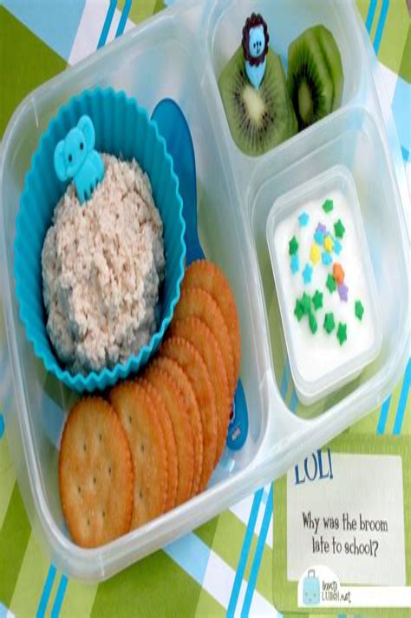 Diy-Cold-Lunch-Box