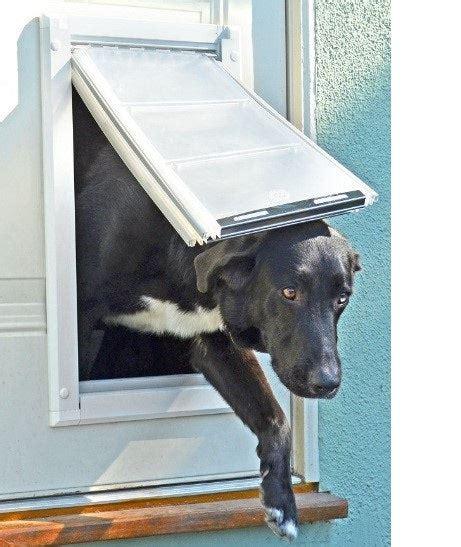 Diy-Cold-Weather-Dog-Door