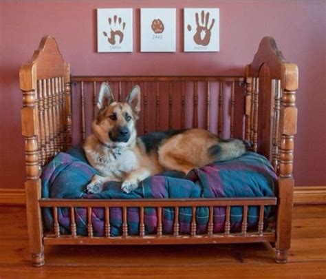 Diy-Dog-Bed-From-Upcycled-Crib-Mattress