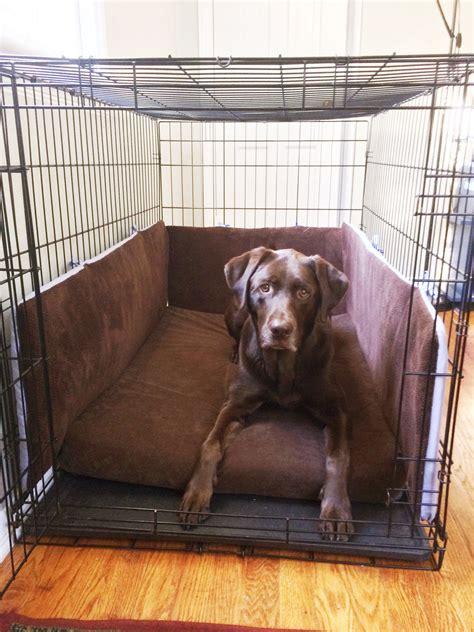 Diy-Dog-Crate-Bumpers