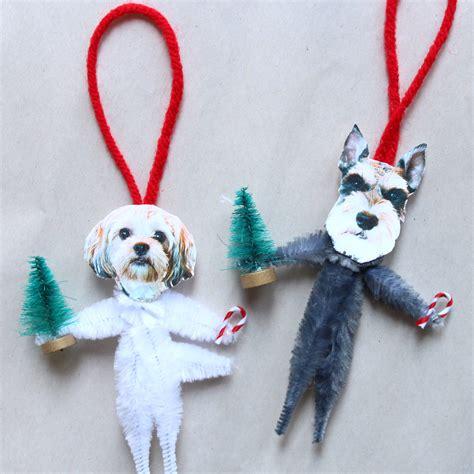 Diy-Dog-Ideas