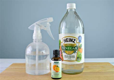 Diy-Dog-Repellent-For-Furniture
