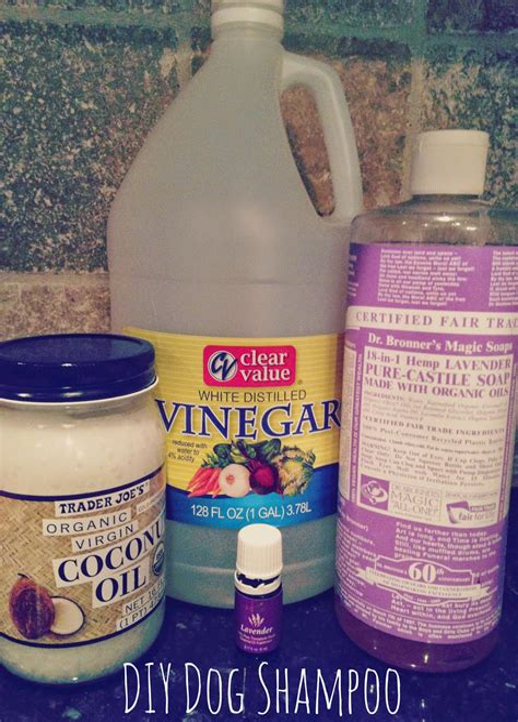 Diy-Dog-Shampoo-Essential-Oils
