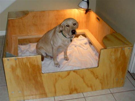 Diy-Dog-Whelping-Box-For-Mastiff
