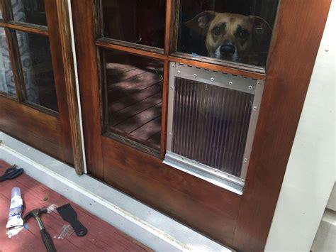 Diy-Doggy-Door-In-Window