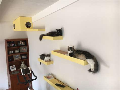Diy-Floating-Shelves-For-Cats