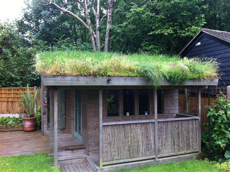 Diy-Green-Shed-Roof