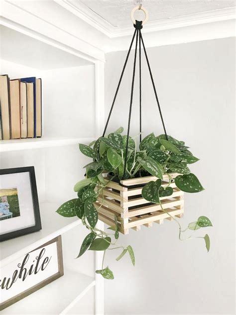 Diy-Hanging-Plants-Ideas