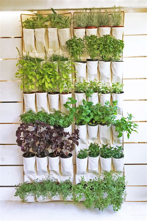 Diy-Herb-Garden-Rack