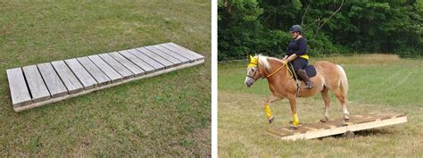 Diy-Horse-Trail-Obstacles