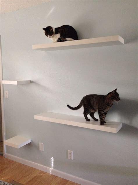 Diy-Ikea-Cat-Shelves