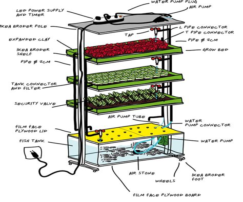 Diy-Ikea-Shelf-In-Home-Aquaponics