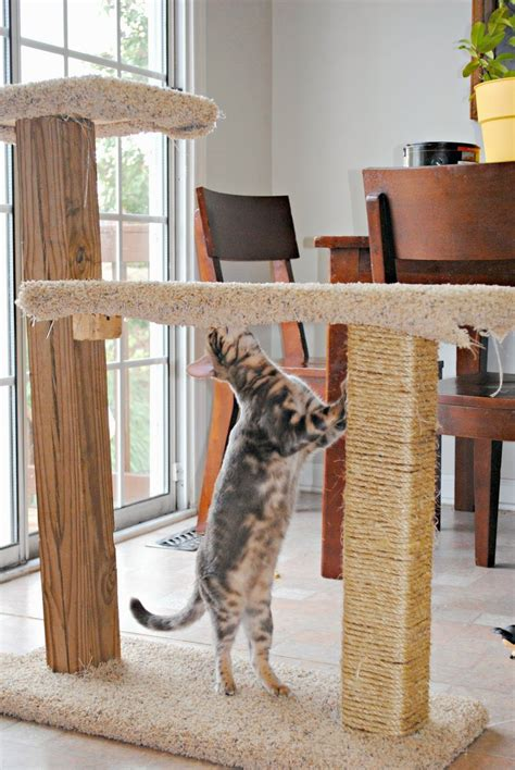 Diy-Keep-Cat-From-Scratching-Furniture