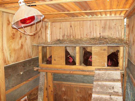 Diy-Ladder-Roost-For-Chicken-Coop