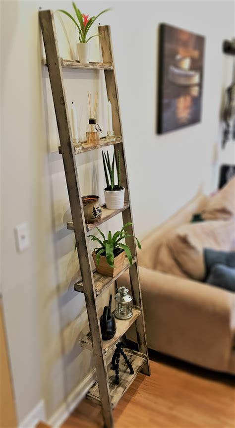 Diy-Ladder-Wall-Shelf