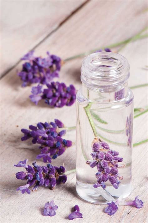 Diy-Lavender-Perfume