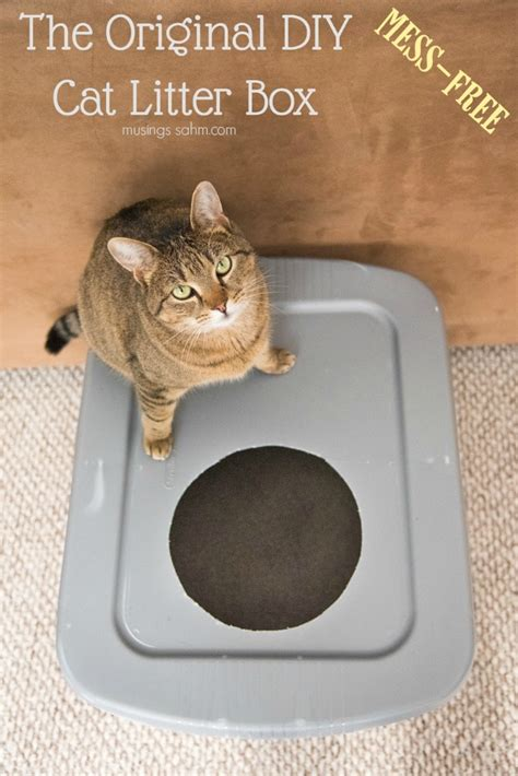 Diy-Mess-Free-Cat-Litter-Box