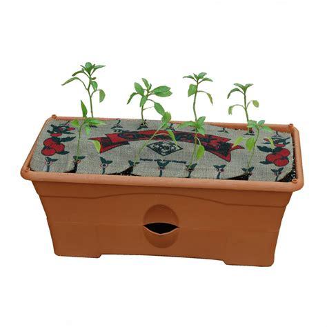 Diy-Micro-Grow-Box-Auto-Watering