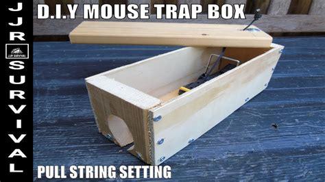 Diy-Mouse-Trap-Box