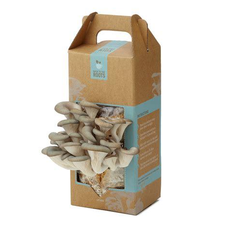 Diy-Mushroom-Box