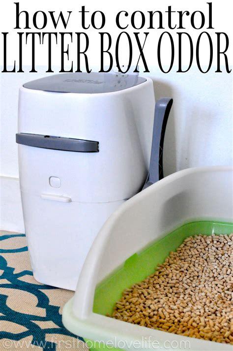 Diy-Odor-Free-Litter-Box