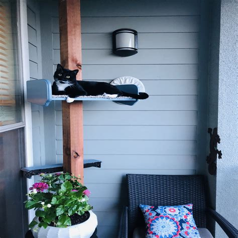 Diy-Outdoor-Cat-Shelves