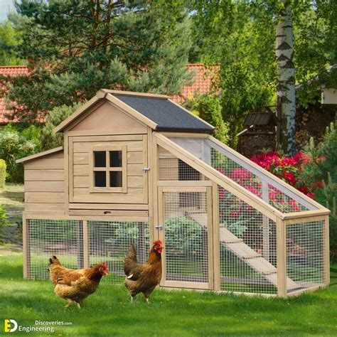 Diy-Outdoor-Chicken-Coop