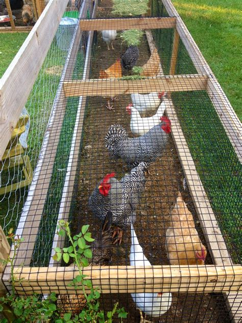 Diy-Outdoor-Chicken-Run