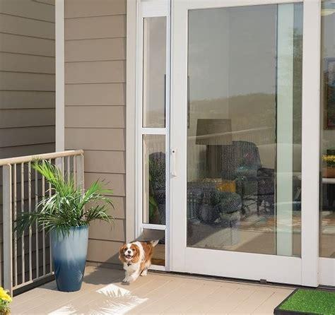 Diy-Pet-Door-For-Sliding-Glass-Door