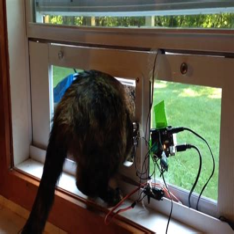 Diy-Pet-Door-Sensor